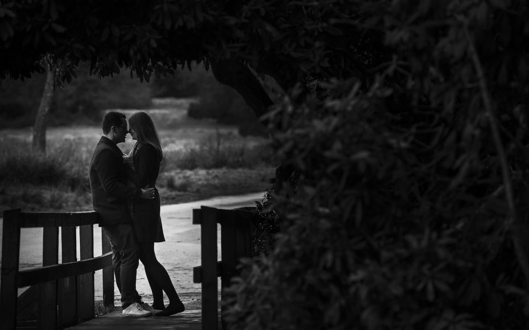 Engagement Photography Birmingham | Sutton Park – Lee & Louise